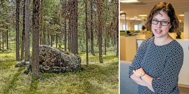 Hur gör man för att överlåta skogskonton?
