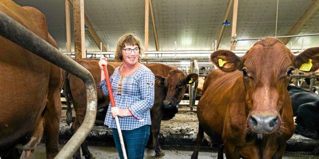 Se Kerstins reklamfilmer för mjölkbondelivet!