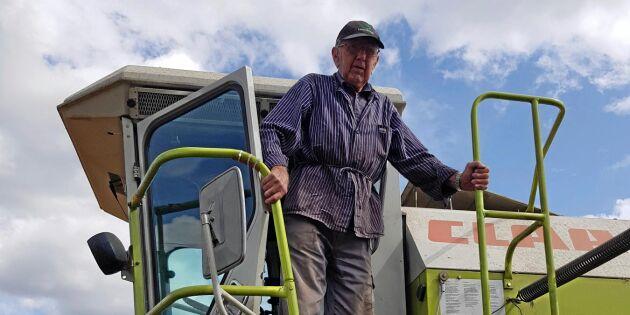 Här tröskar Ingemar, 92, som aldrig förr