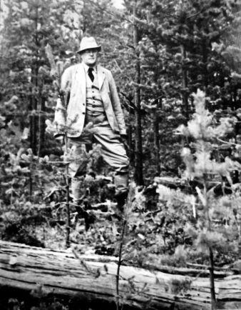 Den berömde jägmästaren Joel Wretlind år 1947 på Näsbergsfältet där hans unga självföryngrade tallskog efter bränning imponerade på kolleger under en exkursion.
