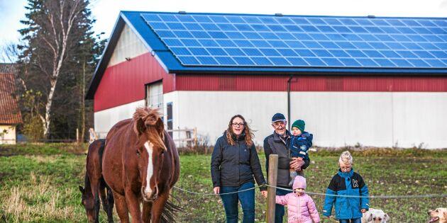 Familjen Frank vill driva gården med enbart solenergi