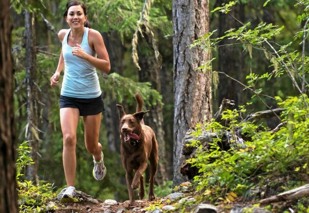 En löprunda i skogen ger dig fler hälofördelar än på löpbandet.