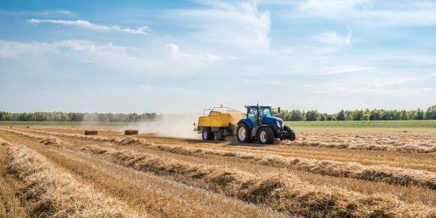 """SD: """"Låt lantbruket ta en klimatpaus"""""""