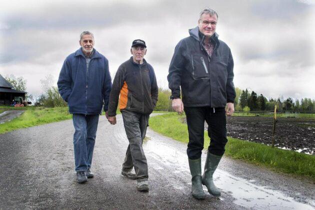 Uppbackning. Hans-Ove Skogh flankeras av grannen Axel Jakobsson och sitt ombud Jan-Erik Andersson, som båda intygar att hästarna på gården har det bra.