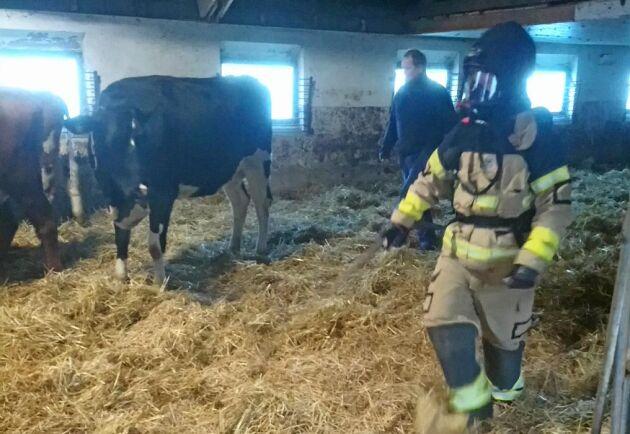 45 brandmän deltog i övningen.