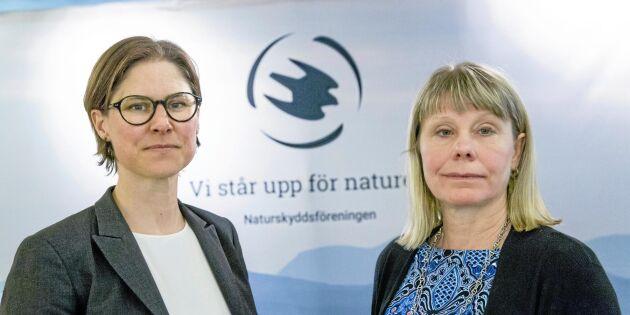 Statligt stöd bekostar Naturskyddsföreningens jurister