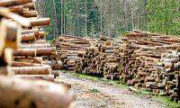 Vinsttapp för Mellanskog