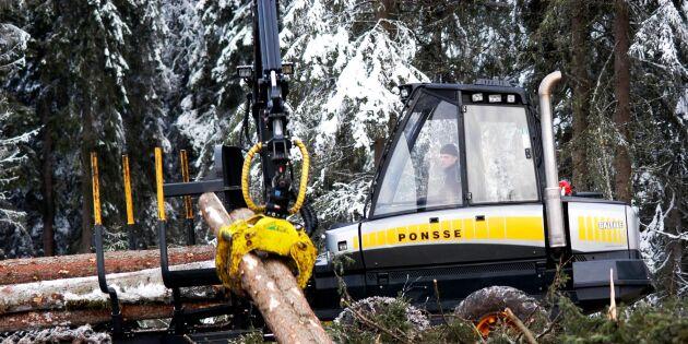 Finland äras med skogsavsättningar