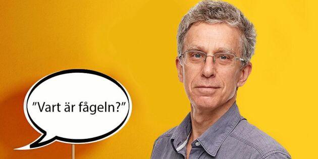 """Håkan Steen: """"Vart är känslan för språket nuförtiden?"""""""