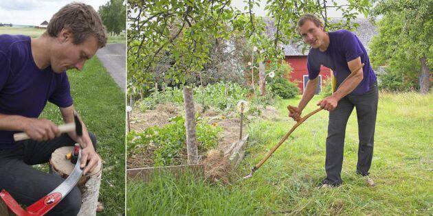 Experten visar tekniken: Lär dig slå gräsmattan med lie