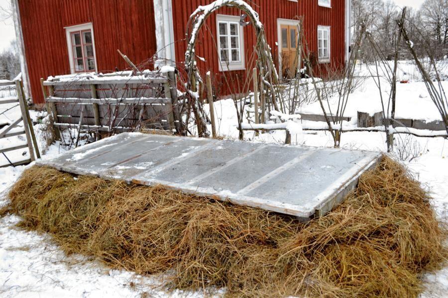 Årets varmbänk i Skillnadens Trädgård.