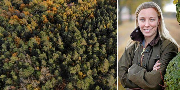 Kan skogen bli till guld i framtiden?
