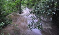 Stor oro för höga flöden