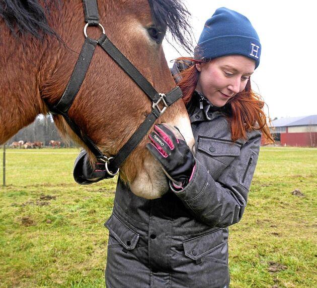 Emma tar hand om hästarna hemma på gården.