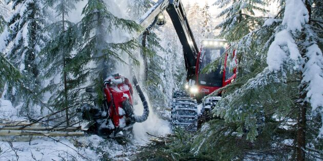 Risk att skogen inte klassas som hållbar