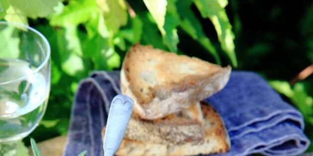 Smårätt med smak av skog: Crostini med kantarelltapenade – enkelt och supergott!