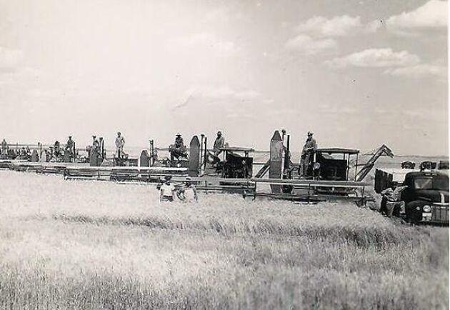 Alla skriverier i tidningarna gjorde att jordbrukare över hela landet blev så imponerade att många köpte en Massey-Harris direkt efter freden.