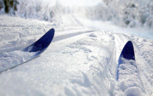 Sugen? Hur låter skidorna i spåret? Frasar? Viner? Susar? Hursomhelst är det ett ljud många längtar efter nu.