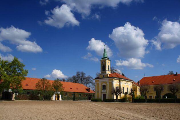 Det nationella stuteriet i Kladruby nad Labem.