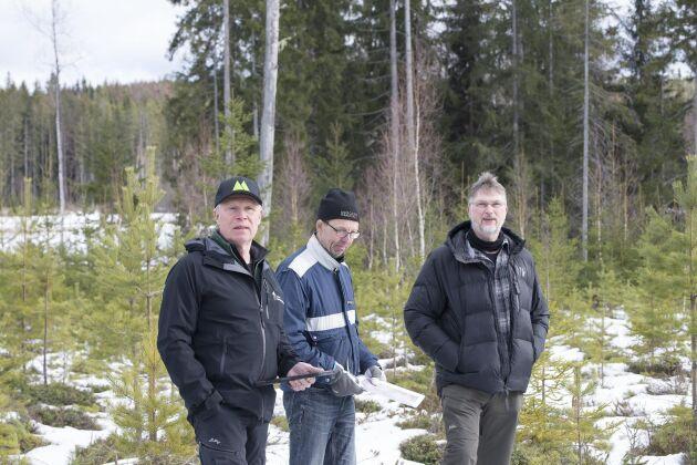 Åke Hansson, Staffan Larsson och Marcus Larsson står på den gräns kartan visar, den fysiska och lagligt gällande ligger 60 meter längre bak där storskogen tar vid.