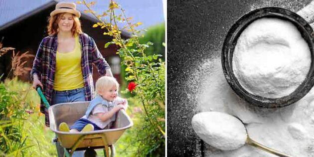 Bikarbonat som hjälpreda i trädgården – 7 toppentips!