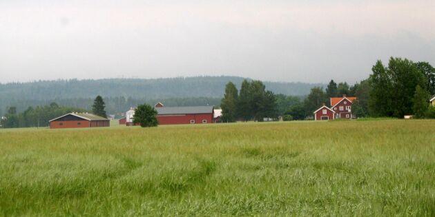 Högt tryck vid gårdsförsäljningar
