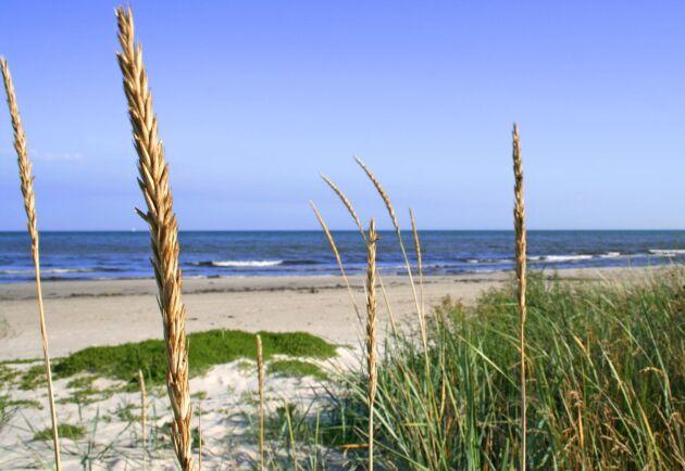 Stranden på bilden har inget med händelsen att göra. Arkivbild.