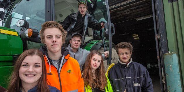Fler unga siktar på grön karriär