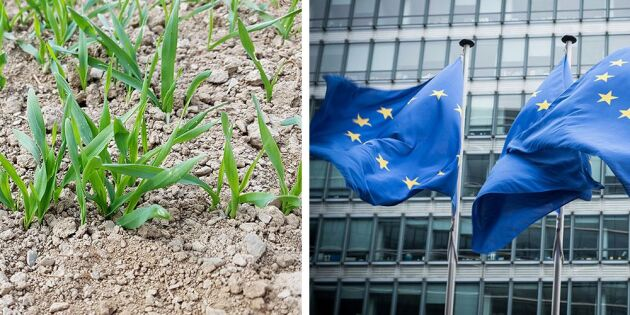 Torkan: EU:s krisfond pressas om stöd