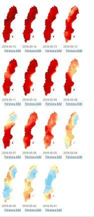Så mycket varmare än normalt var första halvan av maj.