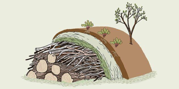 Land odlarskola: Bygg och odla i en hügelbädd