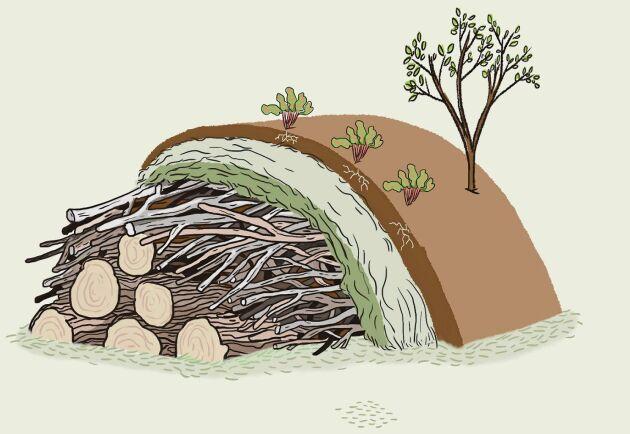 Bygg och odla av skräpvirke. Perfekt odling för långvarig näring.