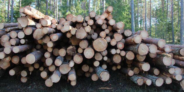 Hård prispress plågar skogsbolagen