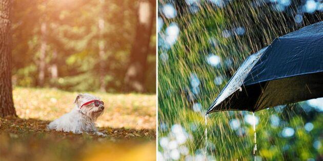 Höst varvas med sensommarvärme – så blir sista augustivädret i hela landet