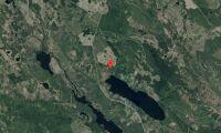 Skogsfastighet i Västerbotten såld