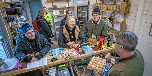 Rekordhög lönsamhet för svenska småföretagare