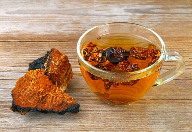 Sprängticka säljs som hälsokost under namnet chaga, och används då bland annat till te, antingen på hela bitar eller i pulverform.
