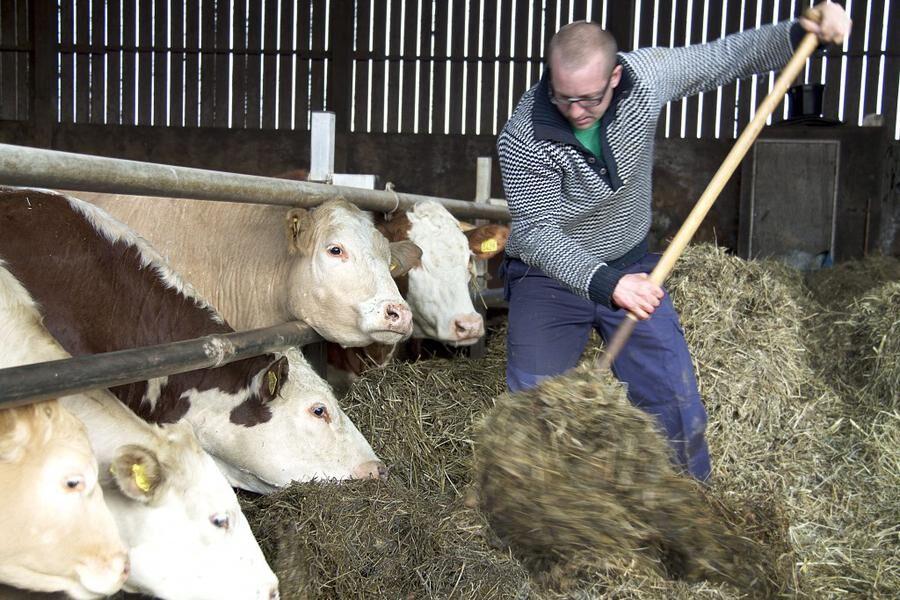 Land.se skriver om företagare på landsbygden
