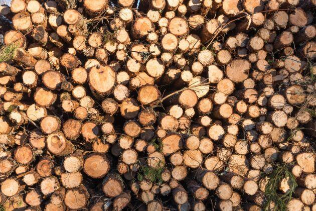 Från hamnen i Kristinestad i Österbotten har massaved exporterats till Sverige under ett drygt år.