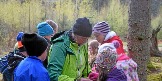 Svårt att locka unga till skogsbranschen