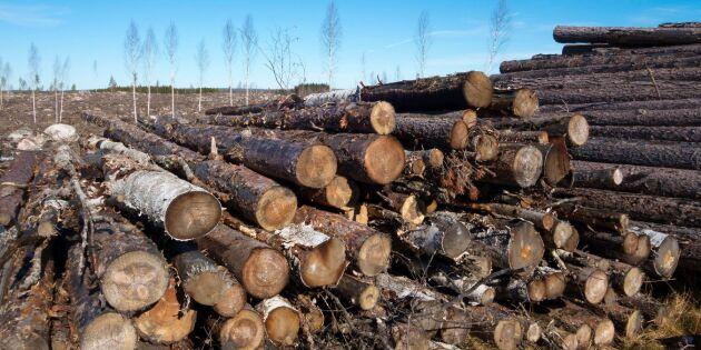 Skogsstyrelsen lovar handlägga brandskador snabbt