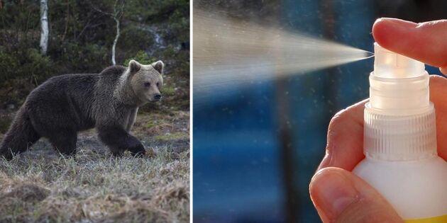 Personal i skogen vill ha björnsprej