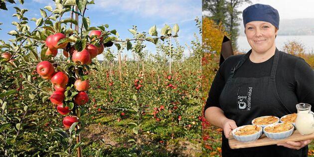 Annika gör strålande affärer på skånska äpplen