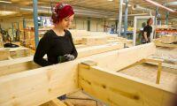 Träbygg bäst för klimatet