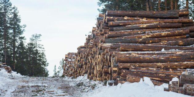 Skogens betydelse för Sveriges ekonomi minskar