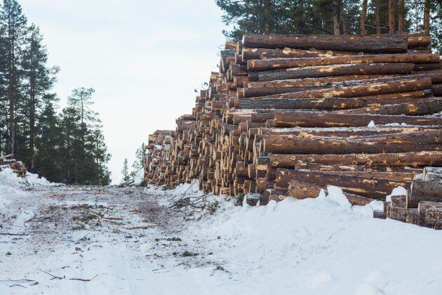 """""""Vi vill ha ett hela Sverige som lever, och det här är en industri som skapar jobb ute i landet"""", säger Kerstin Hallsten, chefsekonom för Industriarbetsgivarna."""