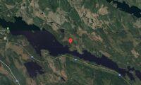 Nya ägare till skogsfastighet i Västerbotten