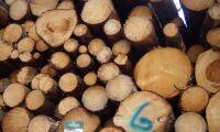 Sveaskog höjer pris på massaved