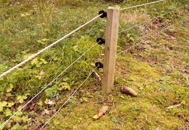 Nu stänger länsstyrelsen i Stockholm stängslingshjälpen men uppmanar djurhållare att fortsätta beta betesmark och skörda vinterfoder på vallarna.