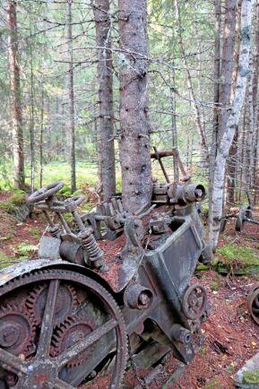 Här har naturen tagit över, då ett par granar har fängslat ett gammalt ramsågverk.
